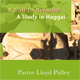 A Call to Rebuild:  A Study in Haggai